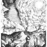 Tardigrada - Widrstand