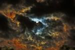 Seelenfrost - Metamorphosis Re-Release